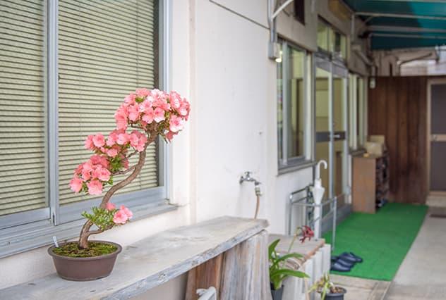 ジェー・ピー・ディー清水イメージ写真2